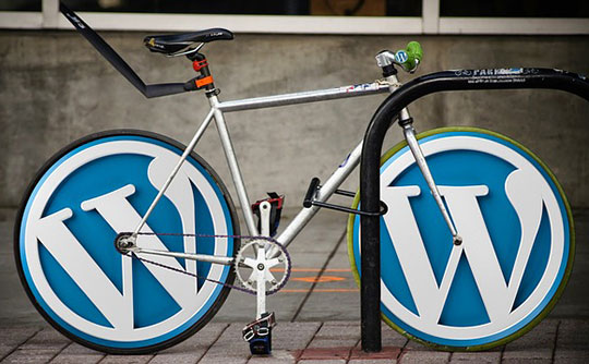WordPress Developers- Crystal Clear SEO